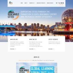 Website Design Portfolio Item